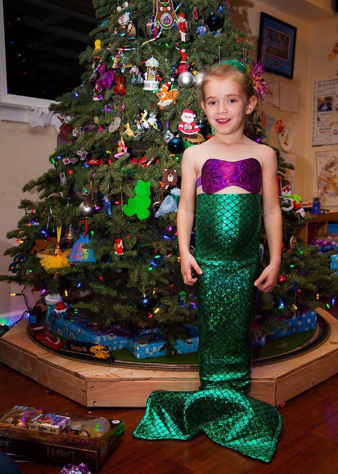 Day 357/1453 - We got a mermaid for Christmas!  Thanks, Rachel!