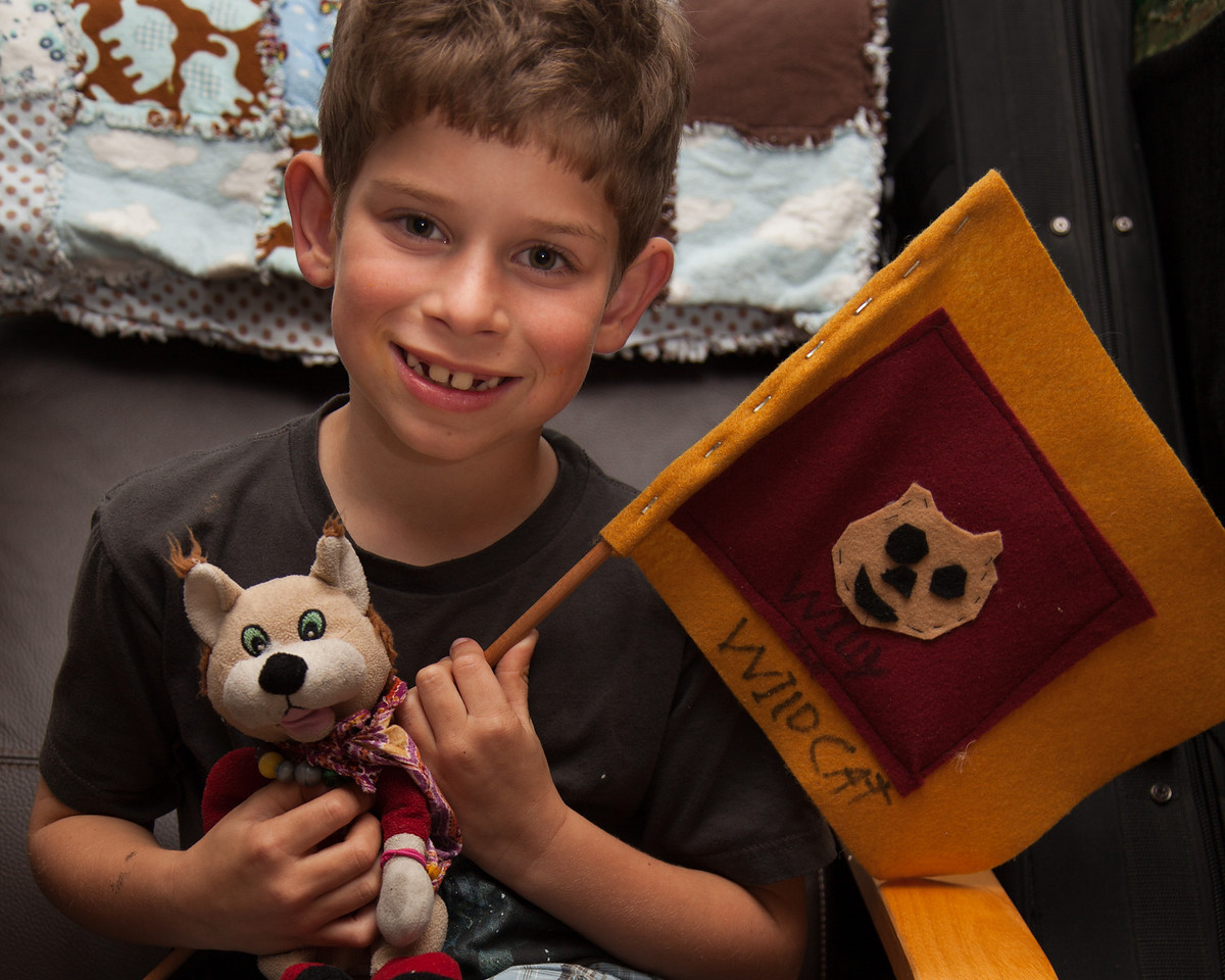 Day 318/1412 - Willy the Wildcat has come home from school for a visit.  Corey made him his own hand sewn flag.